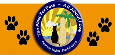 The Place For Pets – All About Love – Port Orange, Florida